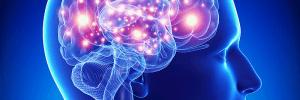 The Best Seizure Alert Systems