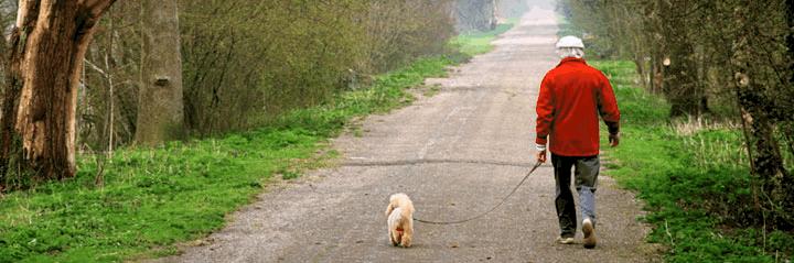 Elderly person walking the dog