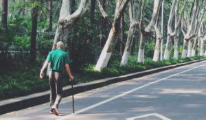 Man wandering on road